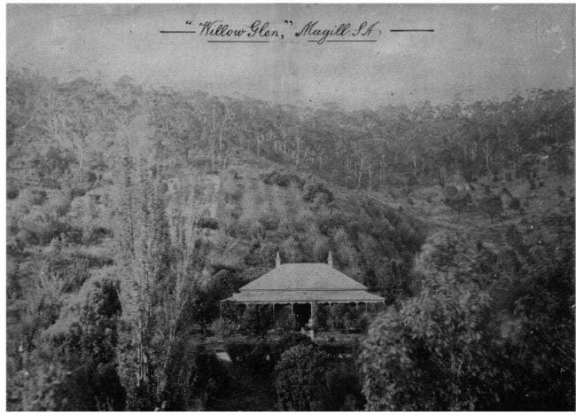 Willow Glen c. 1900